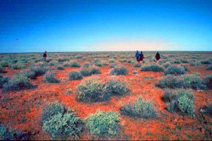 Central Australian desert - hot, dry, but not much vegetation to carry a fire. Simpson Desert